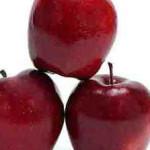 Niedaleko pada jabłko od jabłoni